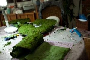 Roll of Moss